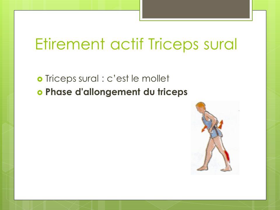 Etirement actif Triceps sural Triceps sural : cest le mollet Phase d allongement du triceps