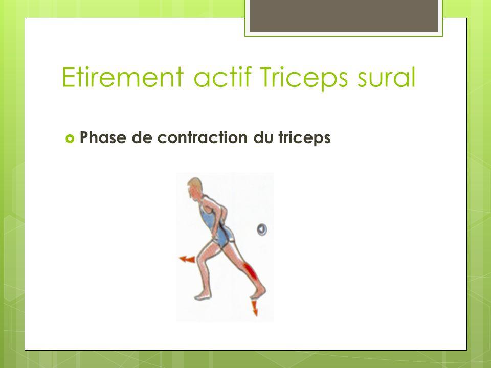 Etirement actif Triceps sural Phase de contraction du triceps