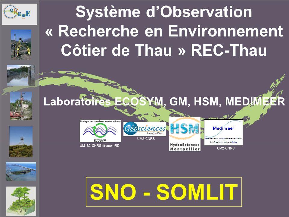 Système dObservation « Recherche en Environnement Côtier de Thau » REC-Thau Laboratoires ECOSYM, GM, HSM, MEDIMEER UM2-CNRS UM1&2-CNRS-Ifremer-IRD SNO - SOMLIT