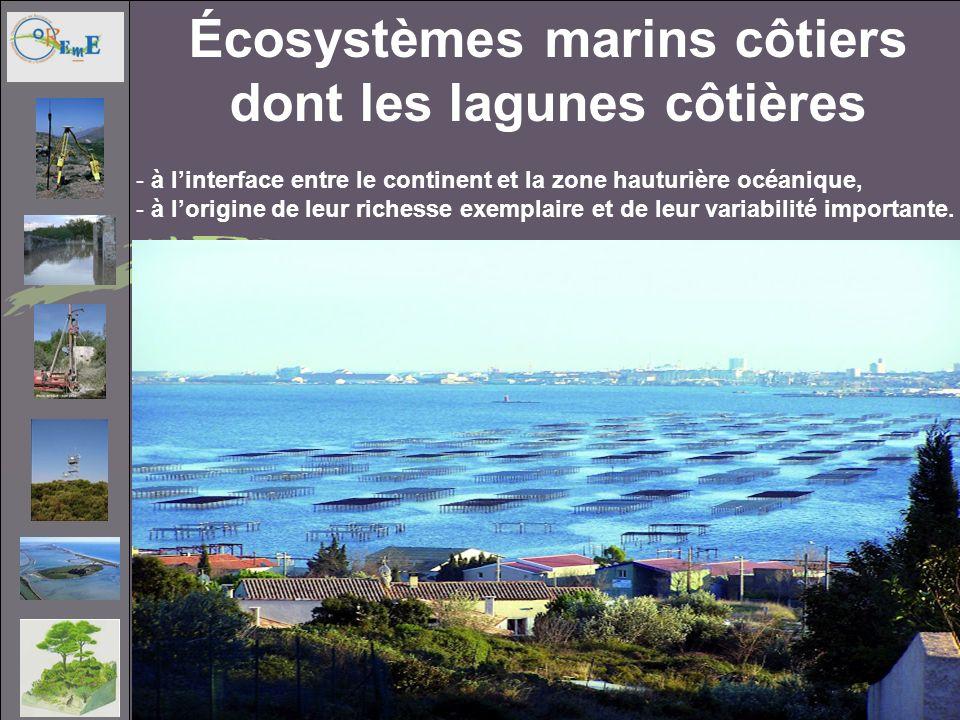 Écosystèmes marins côtiers dont les lagunes côtières - à linterface entre le continent et la zone hauturière océanique, - à lorigine de leur richesse exemplaire et de leur variabilité importante.