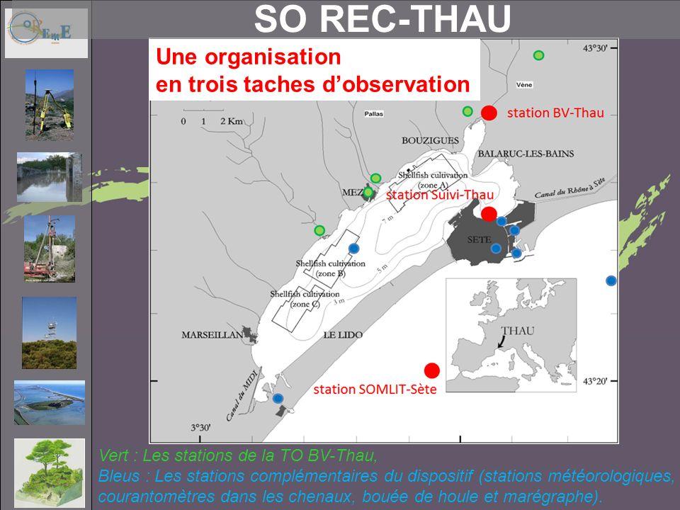 SO REC-THAU Vert : Les stations de la TO BV-Thau, Bleus : Les stations complémentaires du dispositif (stations météorologiques, courantomètres dans les chenaux, bouée de houle et marégraphe).