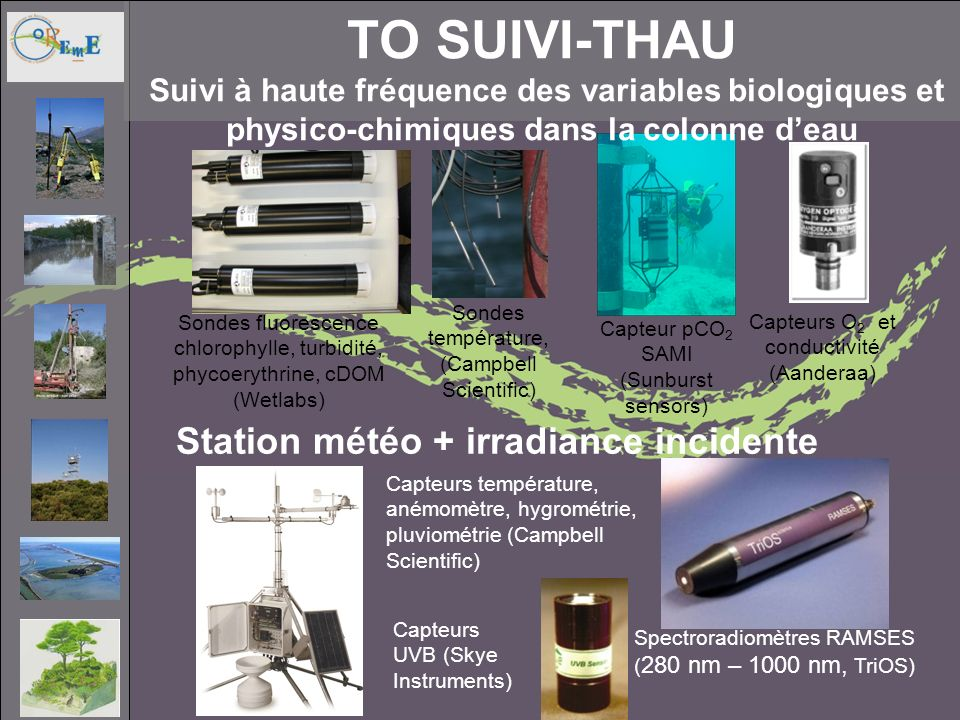 Sondes fluorescence chlorophylle, turbidité, phycoerythrine, cDOM (Wetlabs) Capteurs O 2 et conductivité (Aanderaa) Sondes température, (Campbell Scie