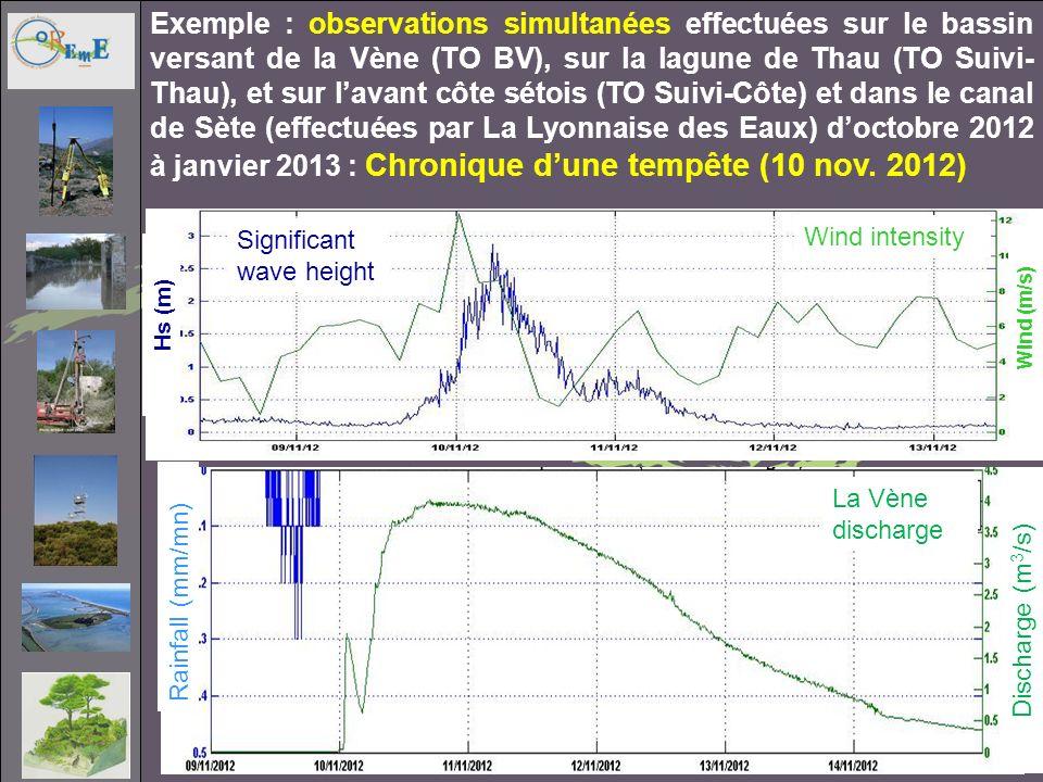 Exemple : observations simultanées effectuées sur le bassin versant de la Vène (TO BV), sur la lagune de Thau (TO Suivi- Thau), et sur lavant côte sét