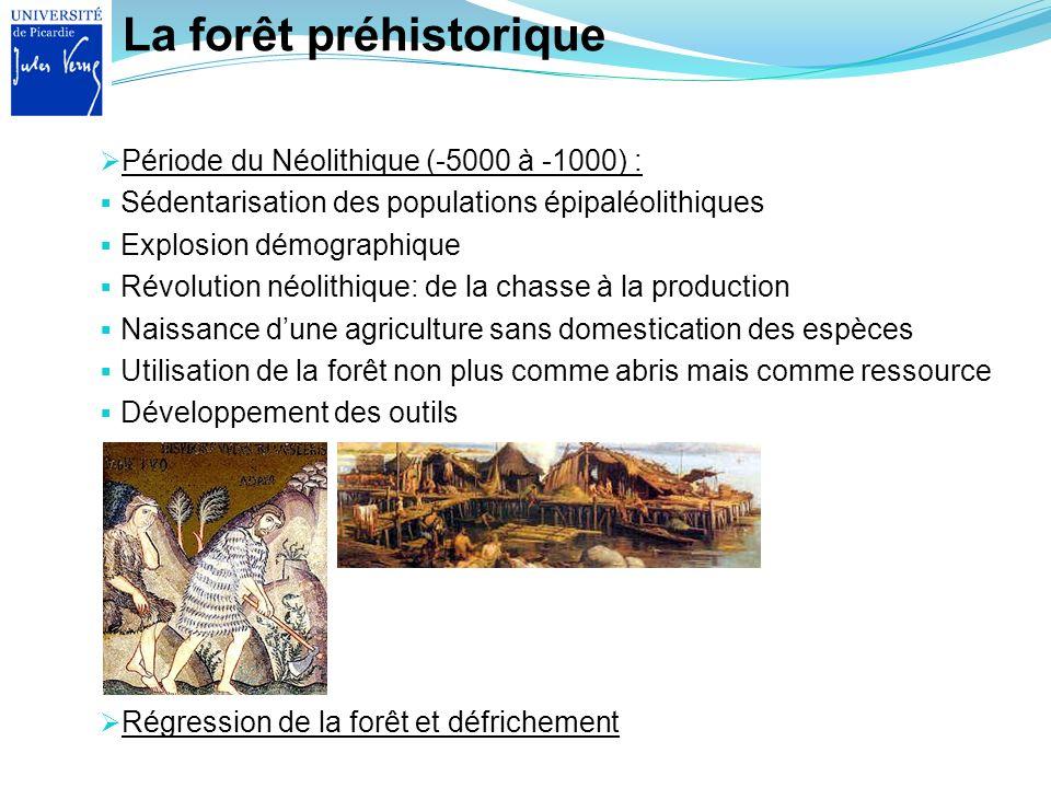 La forêt préhistorique Régression de la forêt et défrichement Période du Néolithique (-5000 à -1000) : Sédentarisation des populations épipaléolithiqu