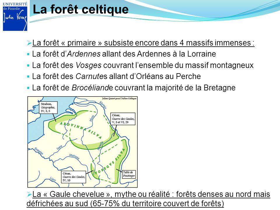 La forêt celtique La « Gaule chevelue », mythe ou réalité : forêts denses au nord mais défrichées au sud (65-75% du territoire couvert de forêts) La f
