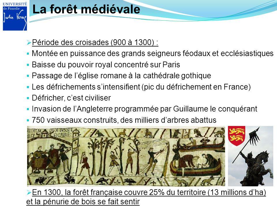 La forêt médiévale En 1300, la forêt française couvre 25% du territoire (13 millions dha) et la pénurie de bois se fait sentir Période des croisades (