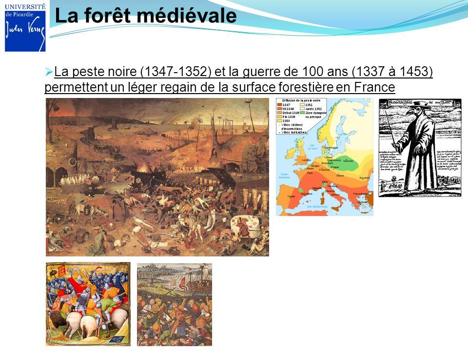 La forêt médiévale La peste noire (1347-1352) et la guerre de 100 ans (1337 à 1453) permettent un léger regain de la surface forestière en France