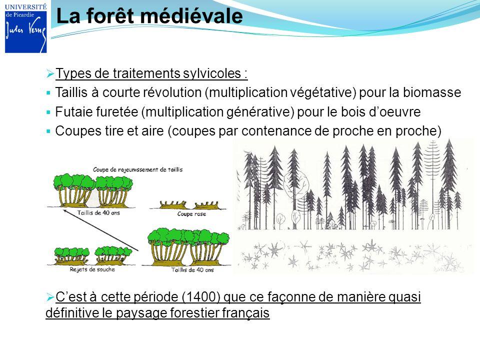 La forêt médiévale Types de traitements sylvicoles : Taillis à courte révolution (multiplication végétative) pour la biomasse Futaie furetée (multipli