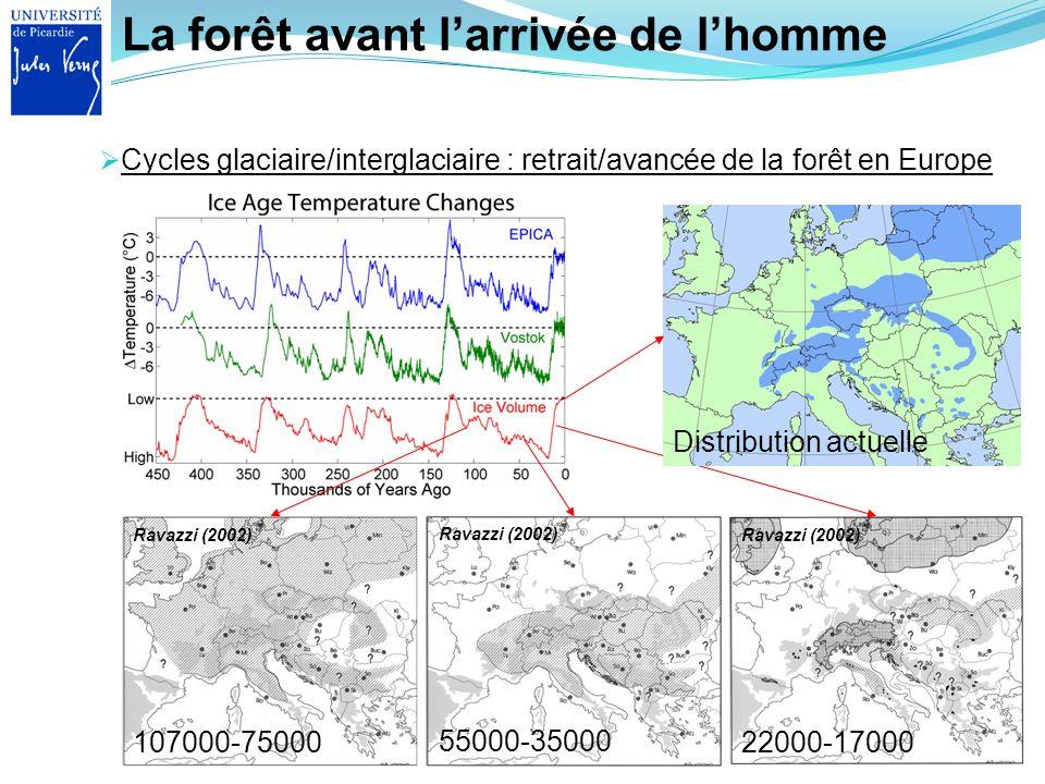 La forêt avant larrivée de lhomme Cycles glaciaire/interglaciaire : retrait/avancée de la forêt en Europe 107000-75000 Ravazzi (2002) 55000-35000 Rava