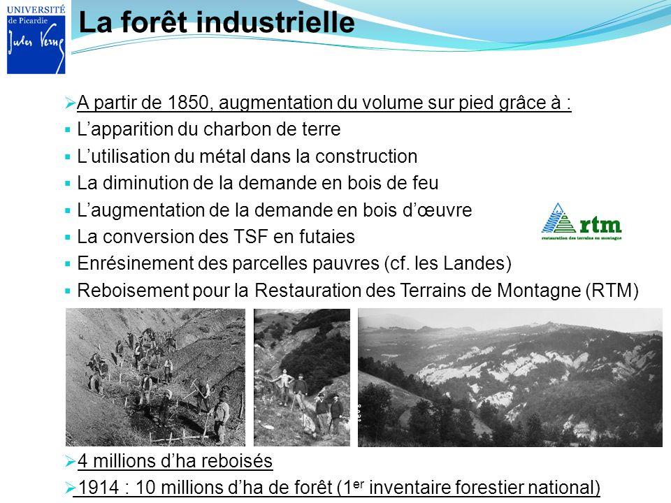 La forêt industrielle 4 millions dha reboisés 1914 : 10 millions dha de forêt (1 er inventaire forestier national) A partir de 1850, augmentation du v