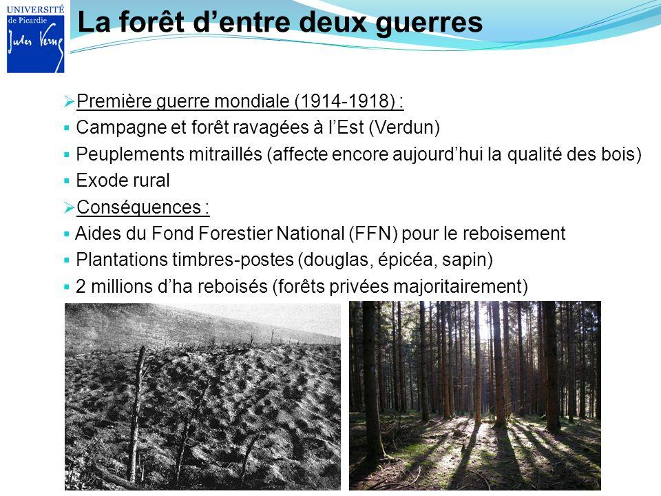 La forêt dentre deux guerres Première guerre mondiale (1914-1918) : Campagne et forêt ravagées à lEst (Verdun) Peuplements mitraillés (affecte encore