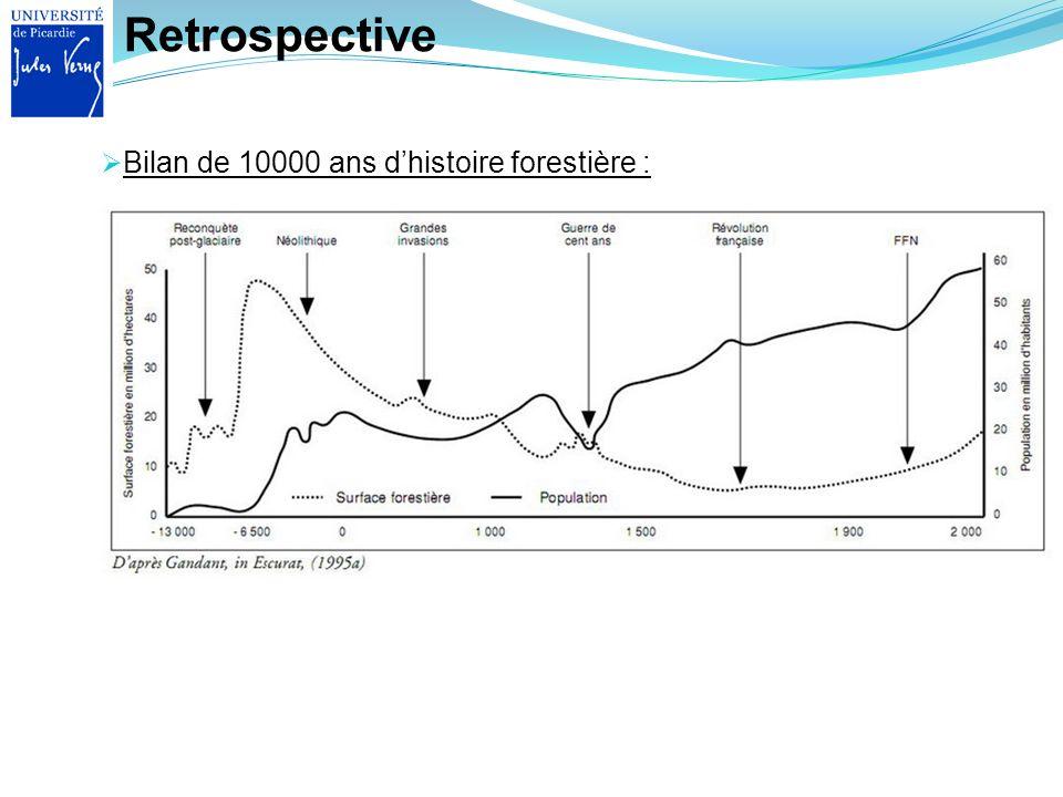 Retrospective Bilan de 10000 ans dhistoire forestière :