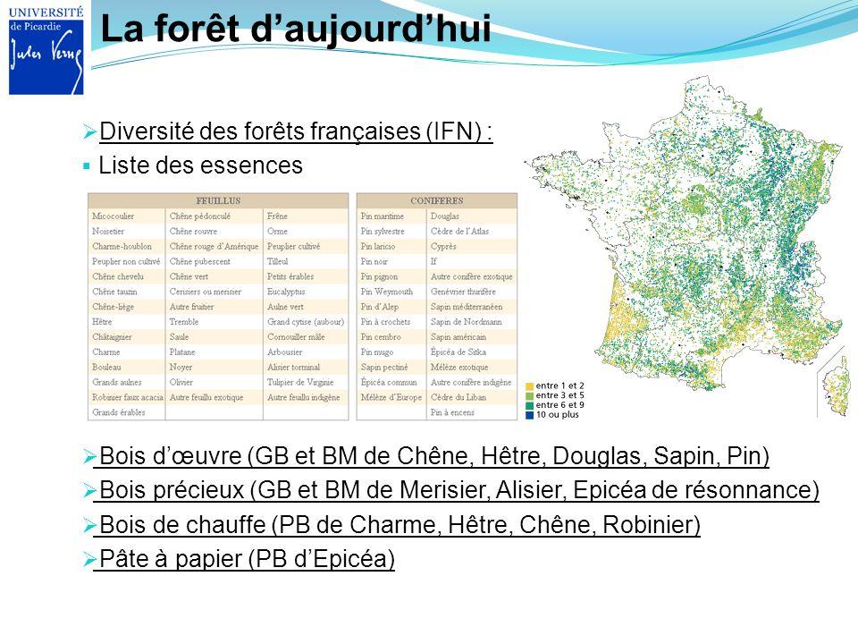 La forêt daujourdhui Diversité des forêts françaises (IFN) : Liste des essences Bois dœuvre (GB et BM de Chêne, Hêtre, Douglas, Sapin, Pin) Bois préci