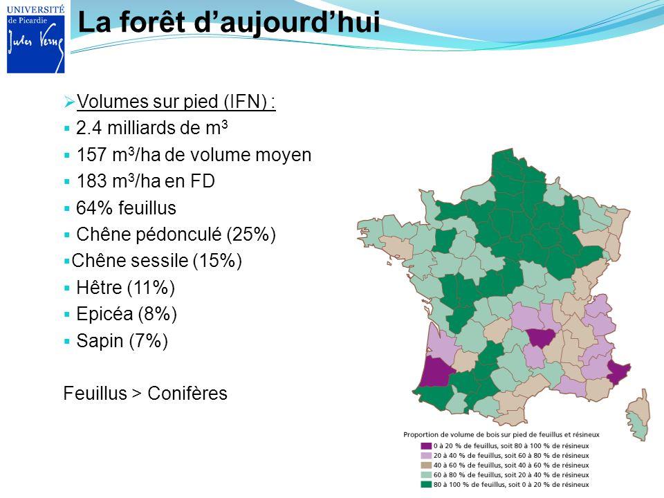 La forêt daujourdhui Volumes sur pied (IFN) : 2.4 milliards de m 3 157 m 3 /ha de volume moyen 183 m 3 /ha en FD 64% feuillus Chêne pédonculé (25%) Ch
