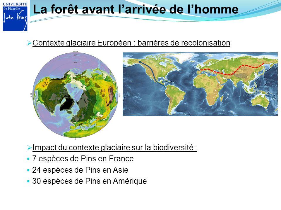 La forêt avant larrivée de lhomme Contexte glaciaire Européen : barrières de recolonisation Impact du contexte glaciaire sur la biodiversité : 7 espèc