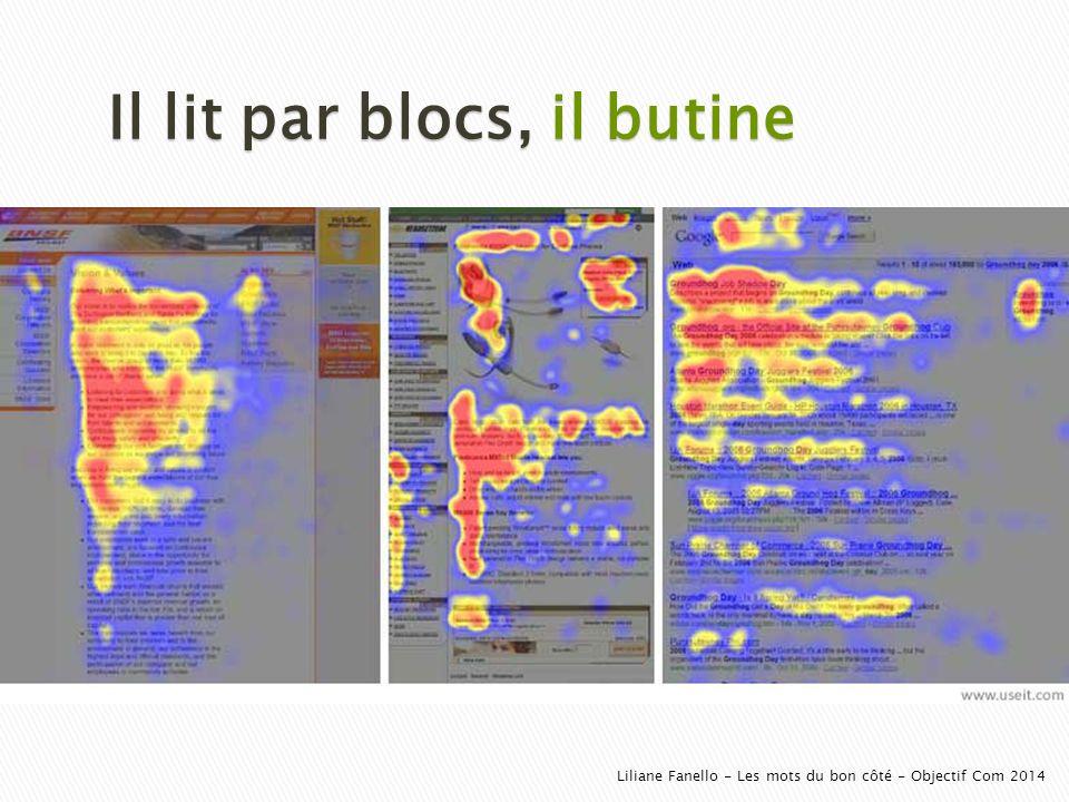 Il lit par blocs, il butine Liliane Fanello - Les mots du bon côté - Objectif Com 2014