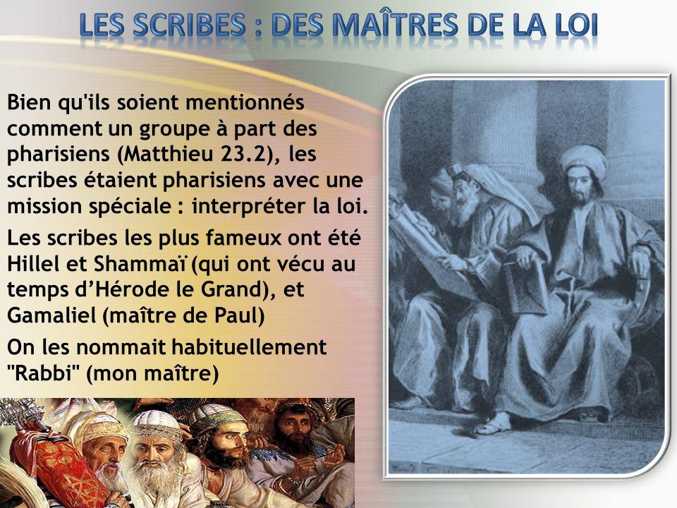 Bien qu ils soient mentionnés comment un groupe à part des pharisiens (Matthieu 23.2), les scribes étaient pharisiens avec une mission spéciale : interpréter la loi.
