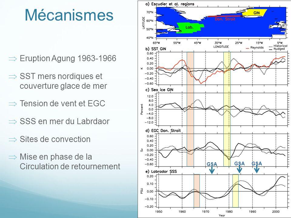 Mécanismes Eruption Agung 1963-1966 SST mers nordiques et couverture glace de mer Tension de vent et EGC SSS en mer du Labrdaor Sites de convection Mise en phase de la Circulation de retournement GSA