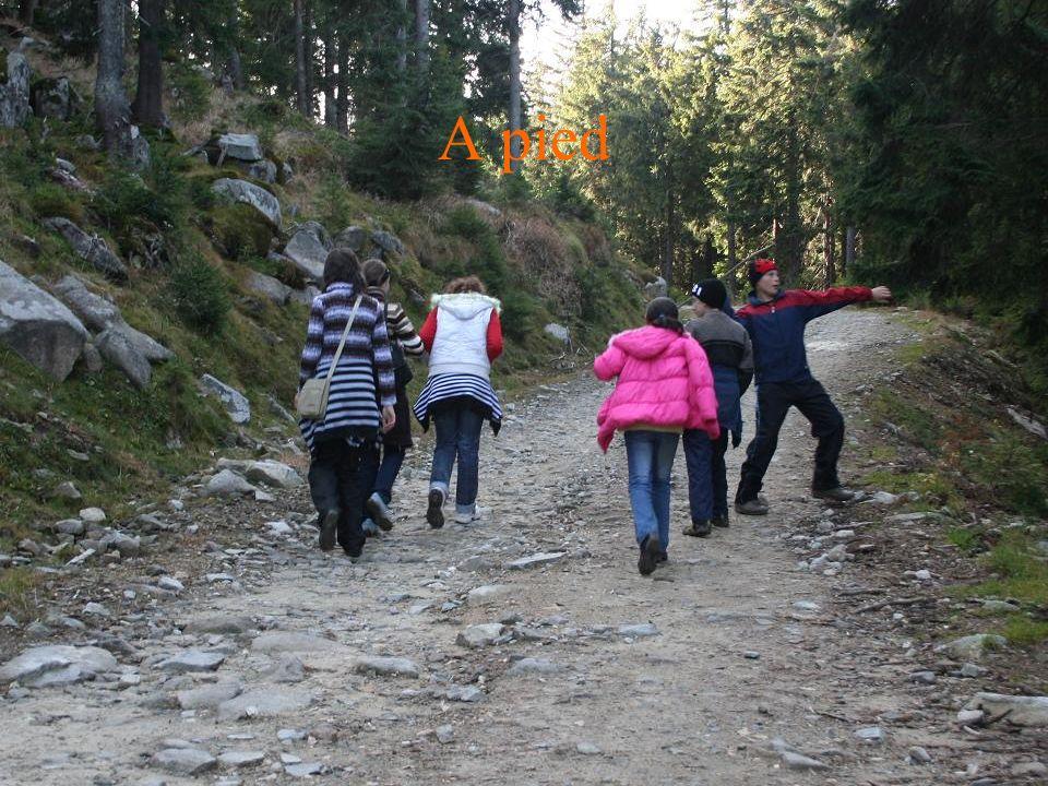 On y est, avec Edith, Alex et Xzena