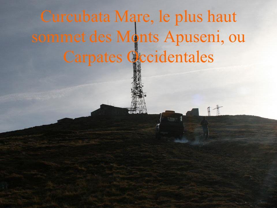 Curcubata Mare, le plus haut sommet des Monts Apuseni, ou Carpates Occidentales
