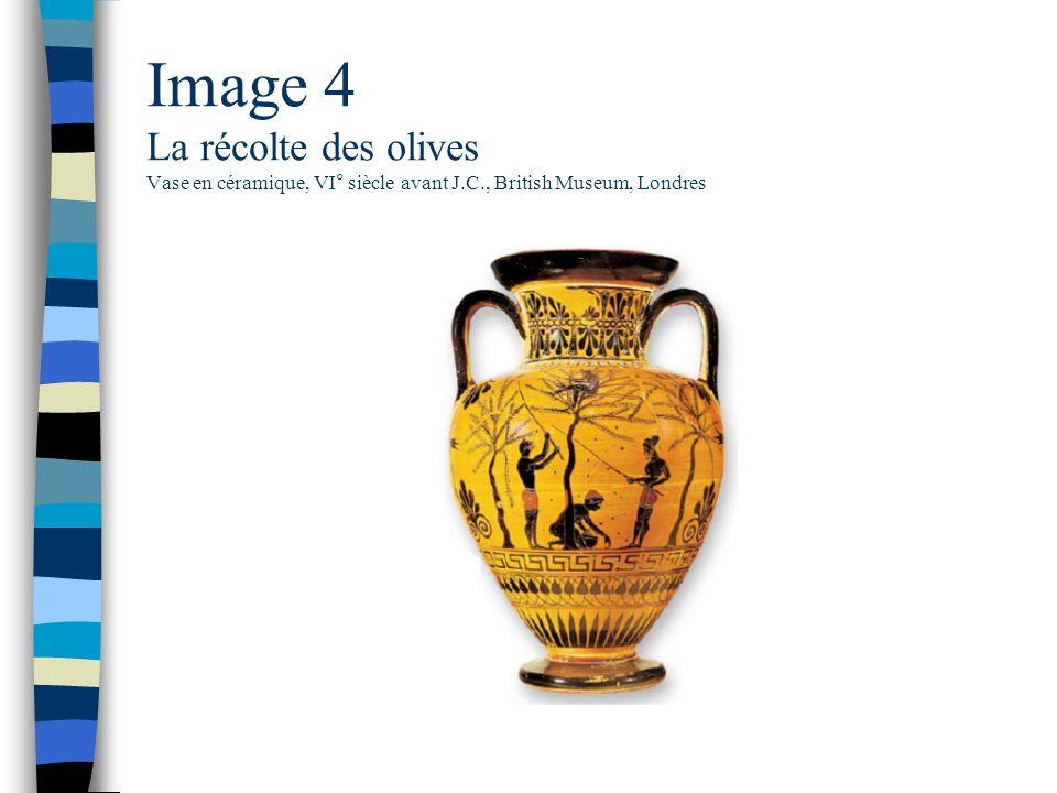 Image 4 La récolte des olives Vase en céramique, VI° siècle avant J.C., British Museum, Londres