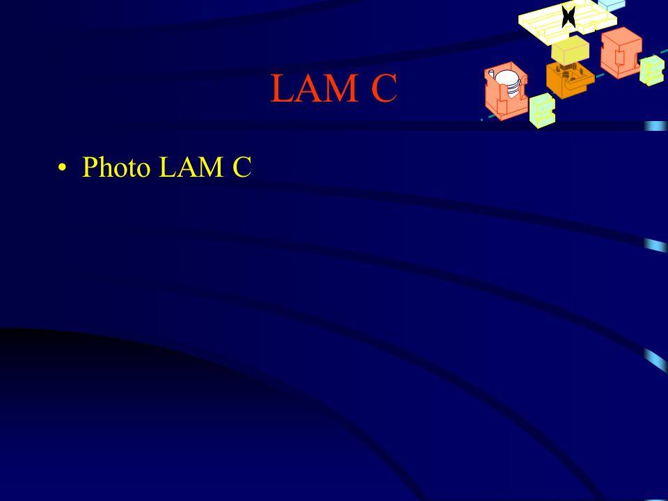 LAM C Photo LAM C