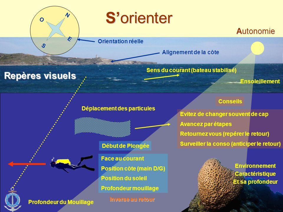 - Limites & conditions Plonger en Autonomie - Avant la plongée - Pendant la plongée - Sorienter - Conclusion