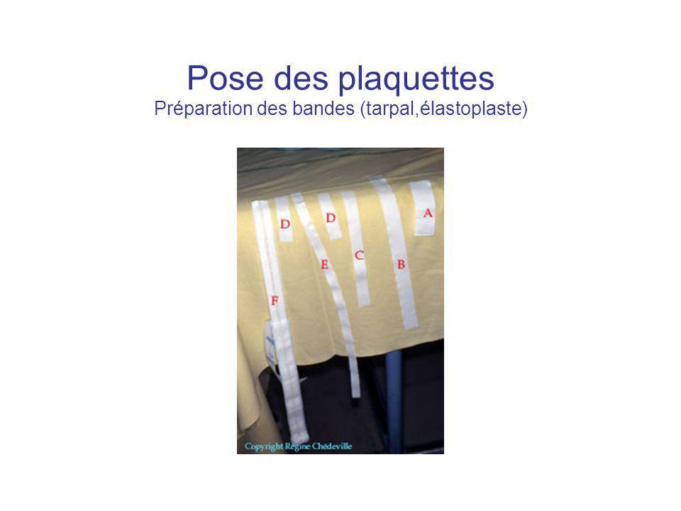 Pose des plaquettes Préparation des bandes (tarpal,élastoplaste)