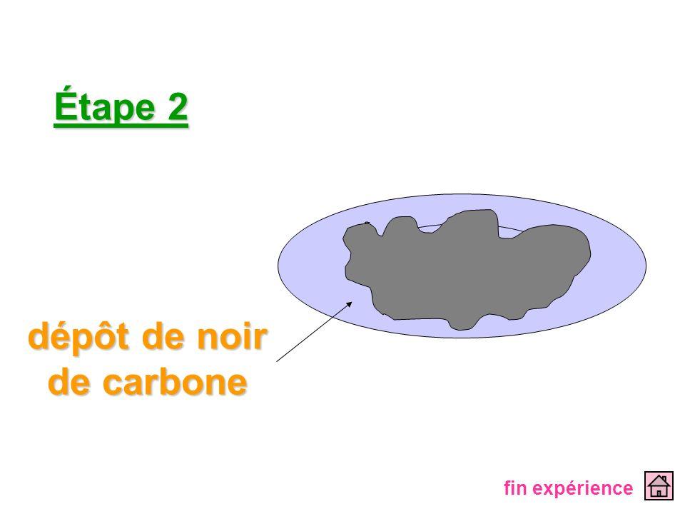 Étape 2 dépôt de noir de carbone fin expérience
