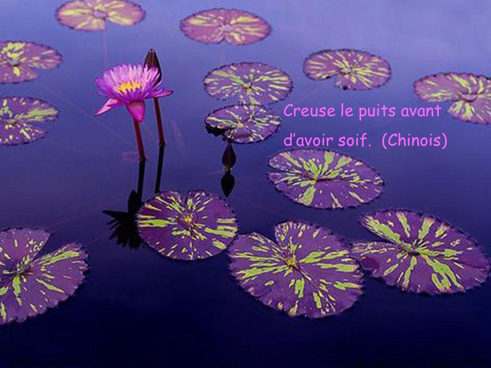 Creuse le puits avant davoir soif. (Chinois)