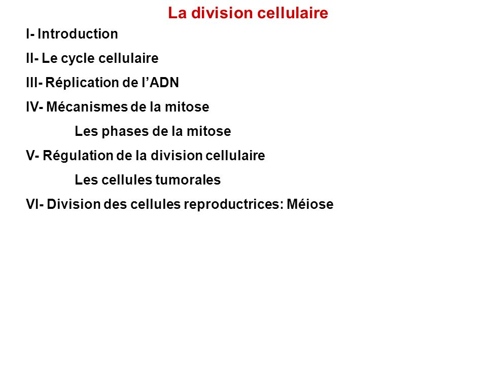 La division cellulaire I- Introduction II- Le cycle cellulaire III- Réplication de lADN IV- Mécanismes de la mitose Les phases de la mitose V- Régulat