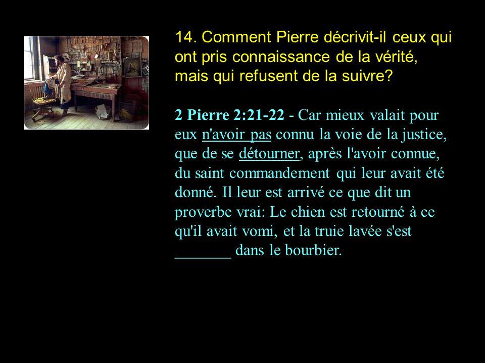 14. Comment Pierre décrivit-il ceux qui ont pris connaissance de la vérité, mais qui refusent de la suivre? 2 Pierre 2:21-22 - Car mieux valait pour e