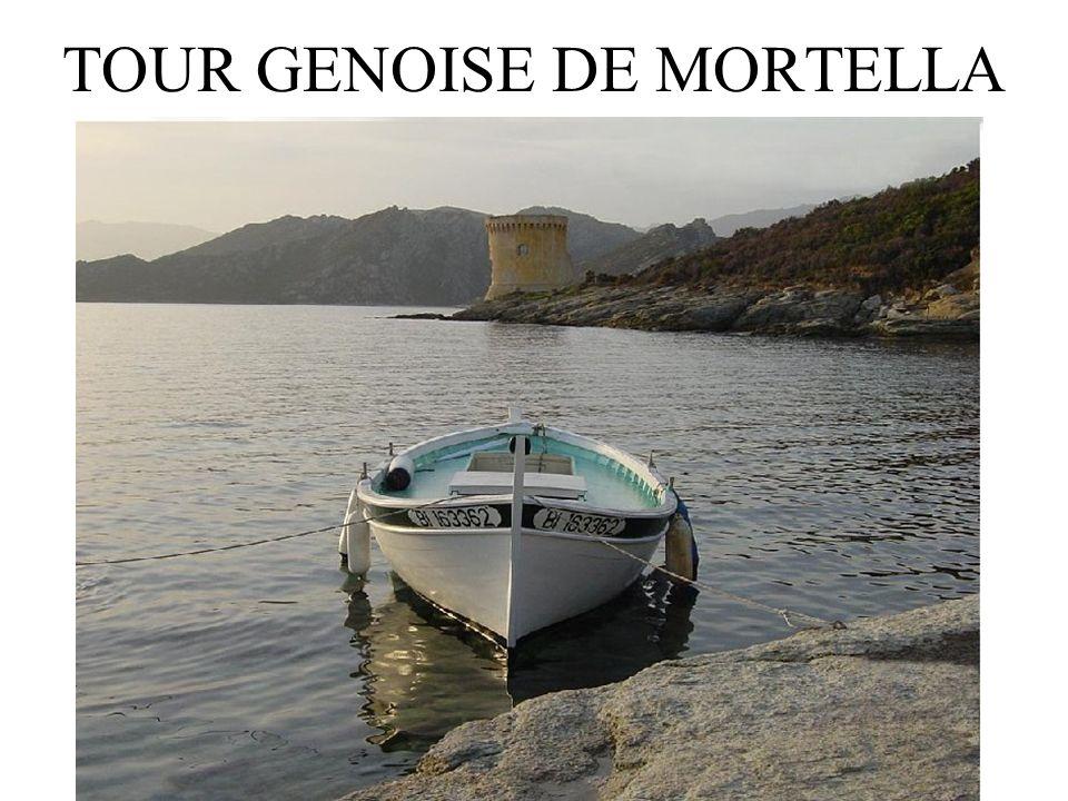 TOUR GENOISE DE MORTELLA