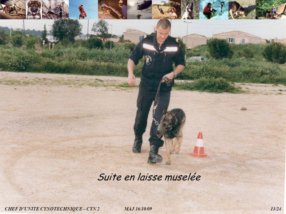 Suite en laisse muselée CHEF DUNITE CYNOTECHNIQUE – CYN 2 MAJ 16/10/09 13/24