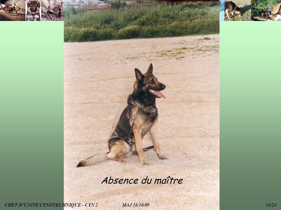 Absence du maître CHEF DUNITE CYNOTECHNIQUE – CYN 2 MAJ 16/10/09 14/24