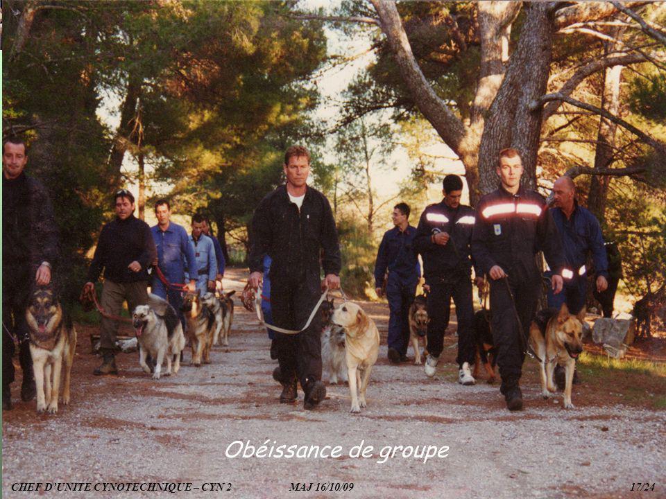 Obéissance de groupe CHEF DUNITE CYNOTECHNIQUE – CYN 2 MAJ 16/10/09 17/24