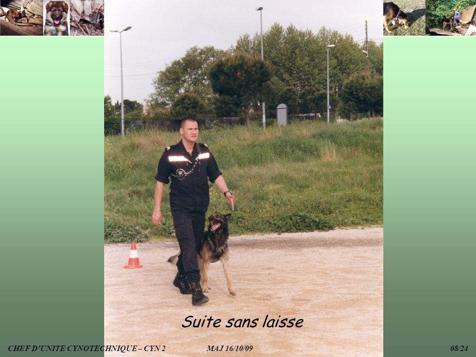 Suite sans laisse CHEF DUNITE CYNOTECHNIQUE – CYN 2 MAJ 16/10/09 08/24