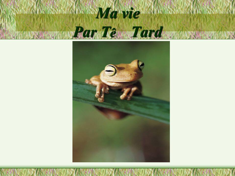 Ma vie Par T ê Tard