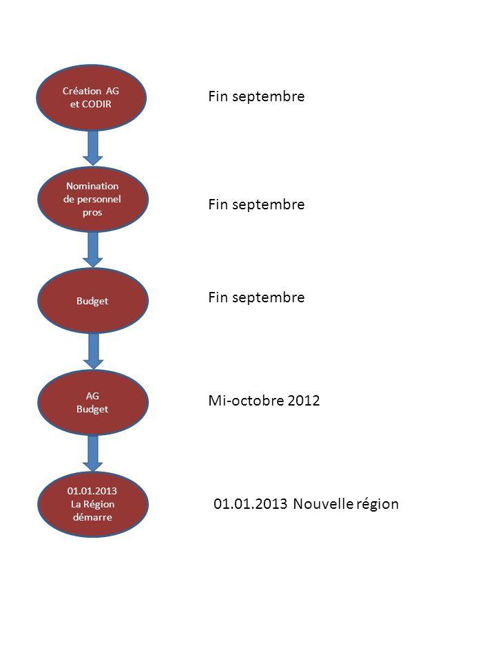 Création AG et CODIR Nomination de personnel pros Budget AG Budget 01.01.2013 La Région démarre Mi-octobre 2012 Fin septembre 01.01.2013 Nouvelle région