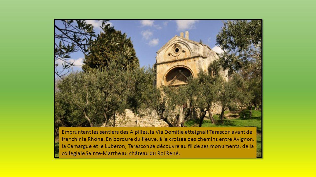 Si Saint-Rémy-de-Provence doit son charme à ses anciennes demeures soigneusement restaurées, ses ruelles pittoresques et ses places ombragées, l'intér