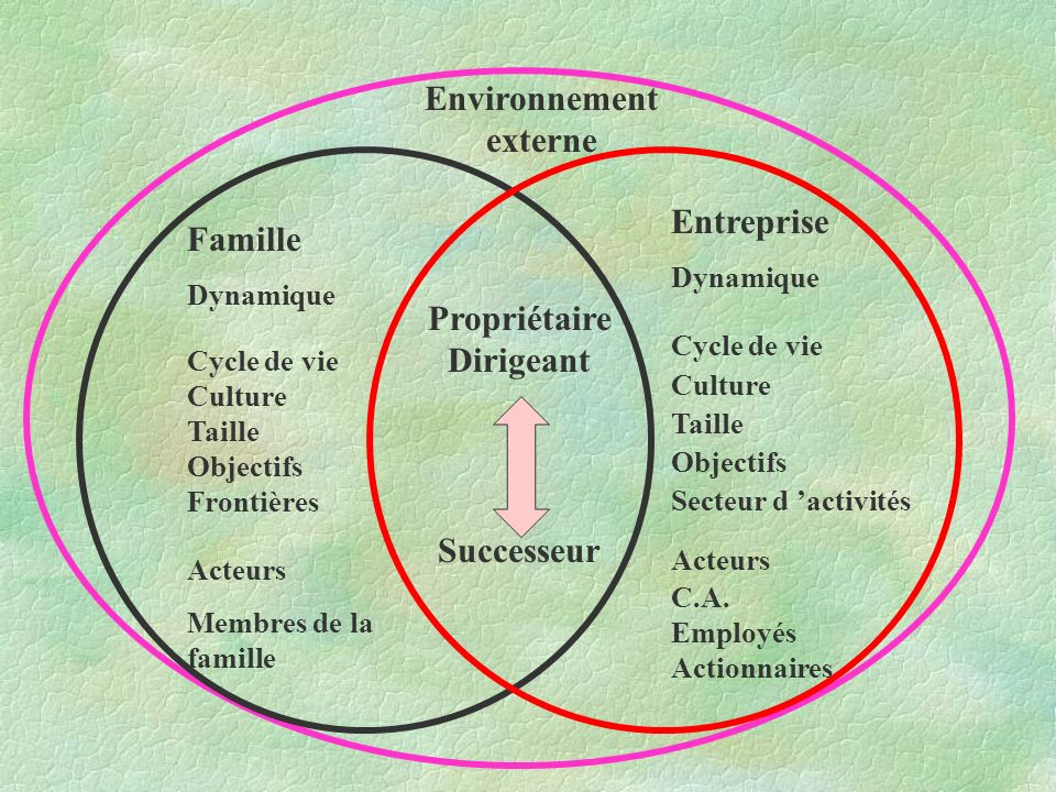Famille Dynamique Cycle de vie Culture Taille Objectifs Frontières Acteurs Membres de la famille Entreprise Dynamique Cycle de vie Culture Taille Objectifs Secteur d activités Acteurs C.A.