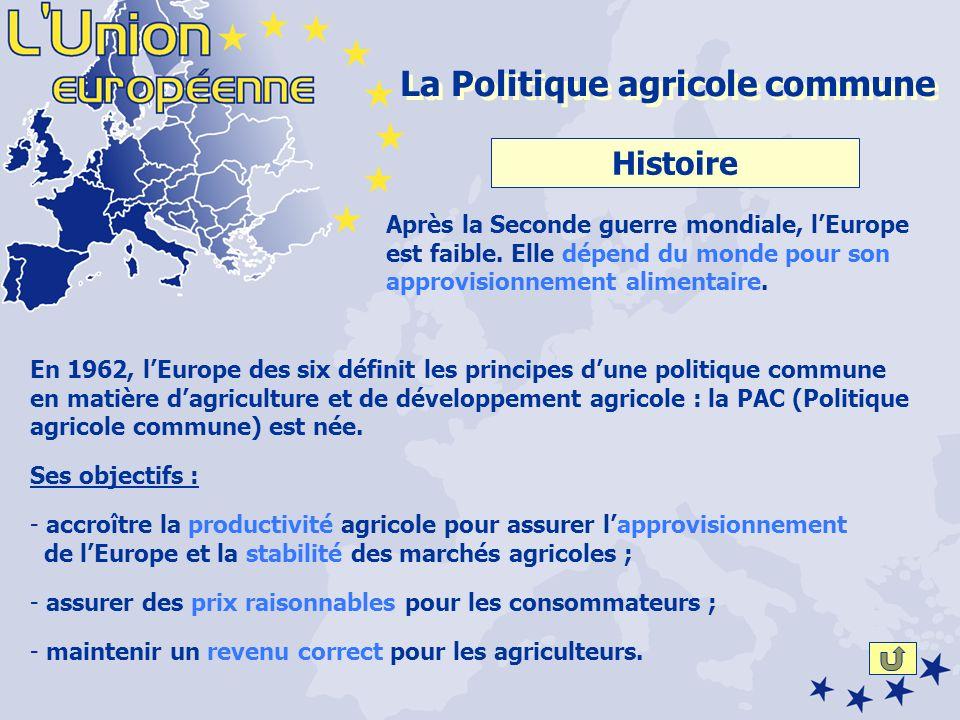 Histoire Moyens Principes Réformes Mécanisme Avantagesetinconvénients La PAC (Politique agricole commune) Cliquez sur le bouton avec la flèche pour voir la suite.