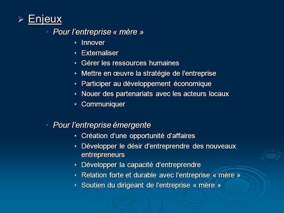 PME : contexte approprié pour lessaimage car cest une organisation souple, un dirigeant omniprésent mais avec des ressources limitées.