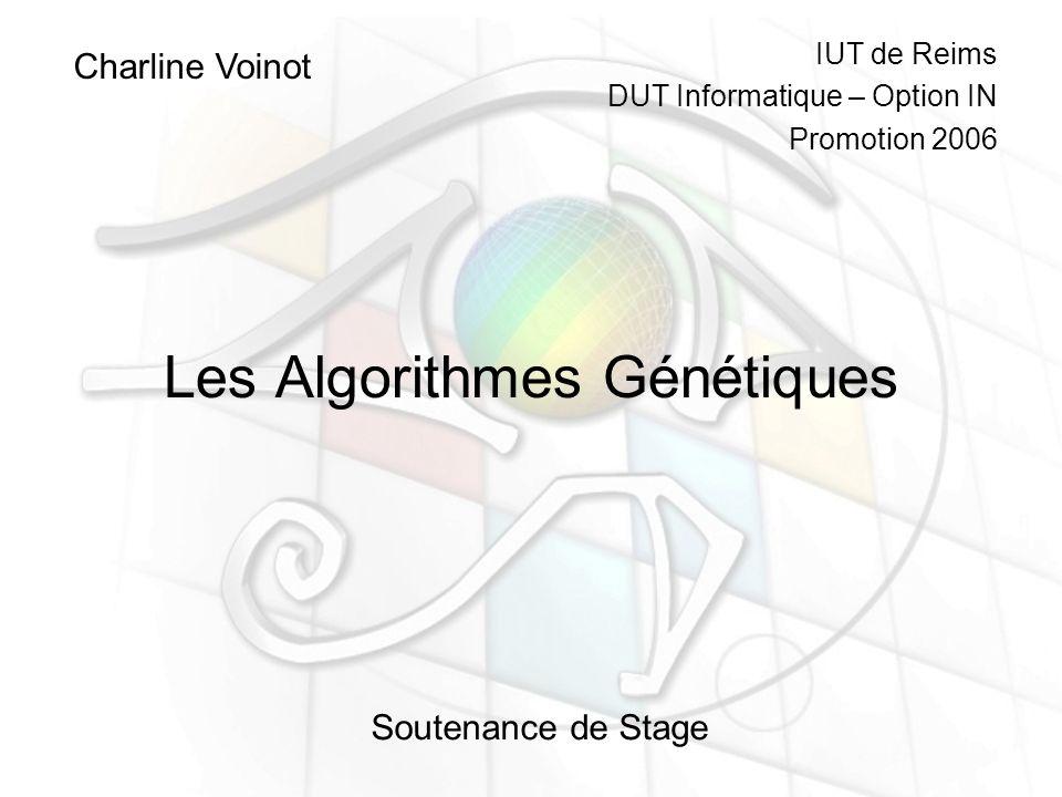 Les Algorithmes Génétiques Charline Voinot Soutenance de Stage IUT de Reims DUT Informatique – Option IN Promotion 2006