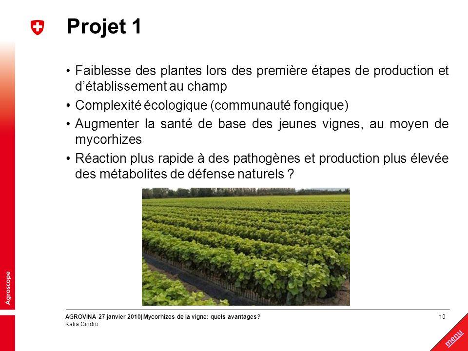10 menu AGROVINA 27 janvier 2010| Mycorhizes de la vigne: quels avantages? Katia Gindro Projet 1 Faiblesse des plantes lors des première étapes de pro