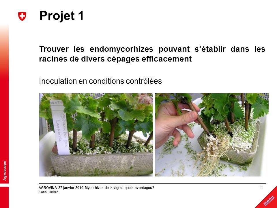 11 menu AGROVINA 27 janvier 2010| Mycorhizes de la vigne: quels avantages? Katia Gindro Projet 1 Trouver les endomycorhizes pouvant sétablir dans les