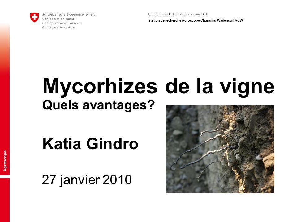 Département fédéral de l'économie DFE Station de recherche Agroscope Changins-Wädenswil ACW 27 janvier 2010 Mycorhizes de la vigne Quels avantages? Ka