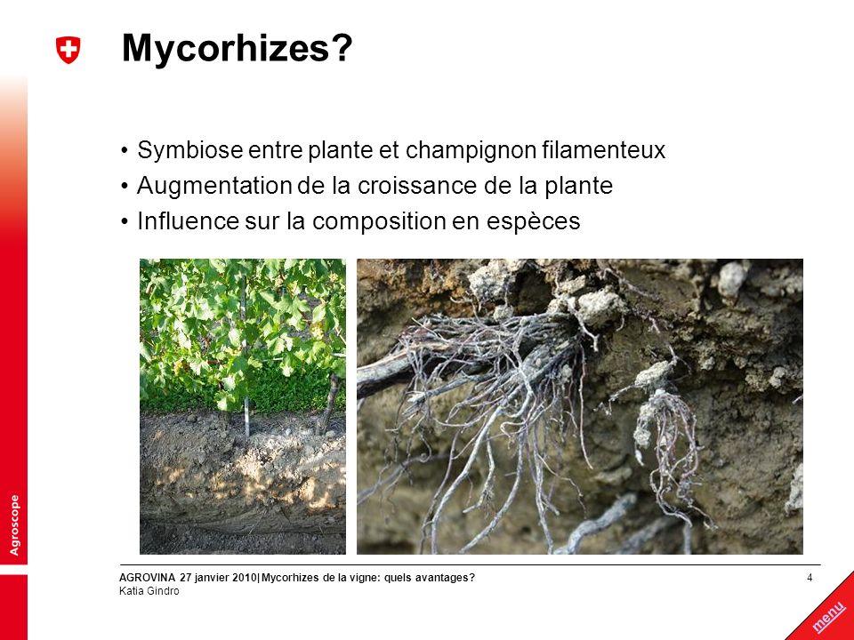 4 menu AGROVINA 27 janvier 2010| Mycorhizes de la vigne: quels avantages? Katia Gindro Mycorhizes? Symbiose entre plante et champignon filamenteux Aug