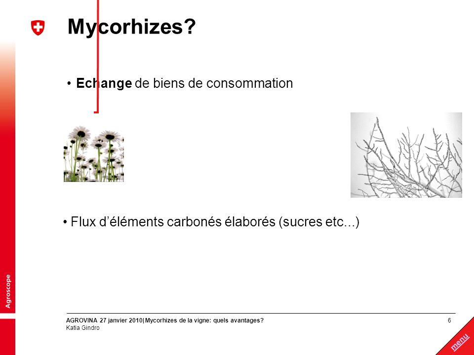 17 menu AGROVINA 27 janvier 2010| Mycorhizes de la vigne: quels avantages.