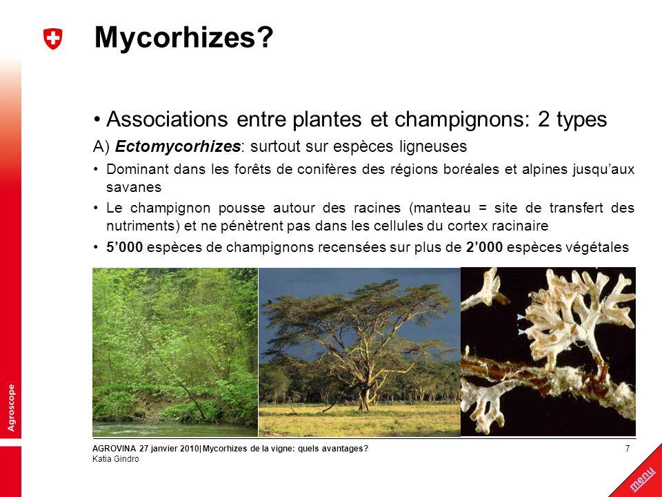 7 menu AGROVINA 27 janvier 2010| Mycorhizes de la vigne: quels avantages? Katia Gindro Mycorhizes? Associations entre plantes et champignons: 2 types